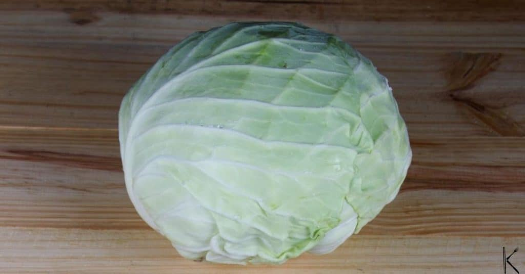 freezing cabbage