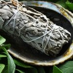 How To Dry Fresh Sage Leaves Successfully
