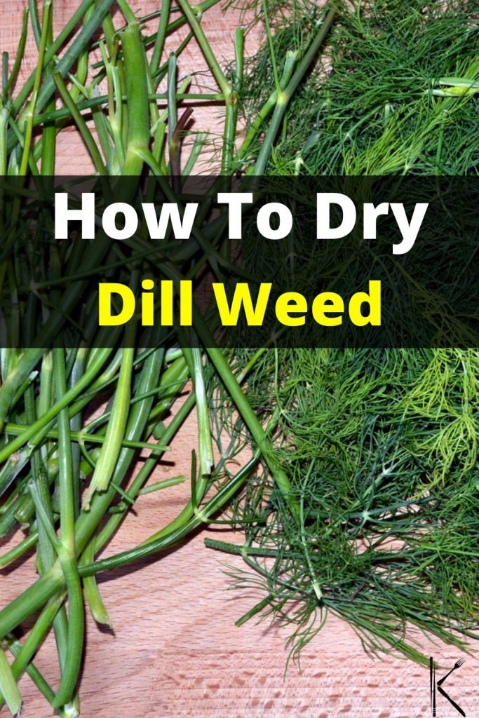 drying dill weed